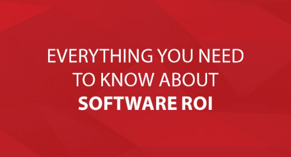 Everything You Need to Know about Software ROI
