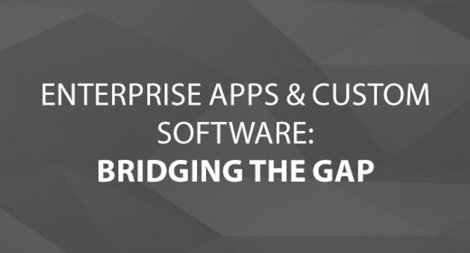Enterprise Apps & Custom Software: Bridging the Gap