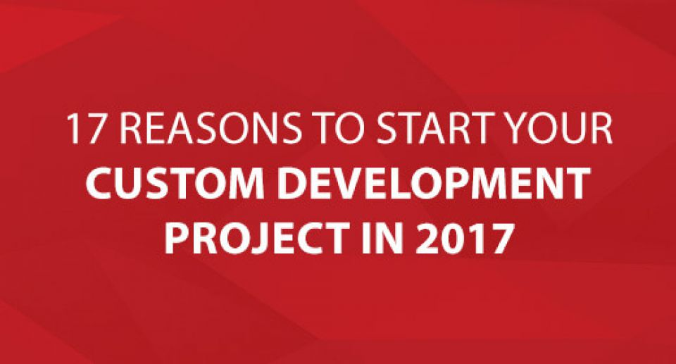 17 Reasons To Start Your Custom Development Project In 2017