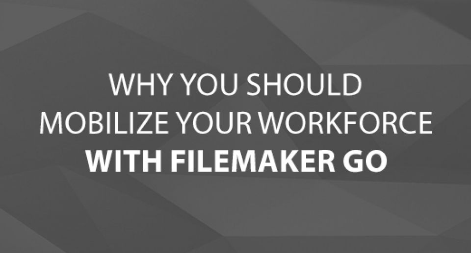 Why You Should Mobilize Your Workforce With FileMaker Go
