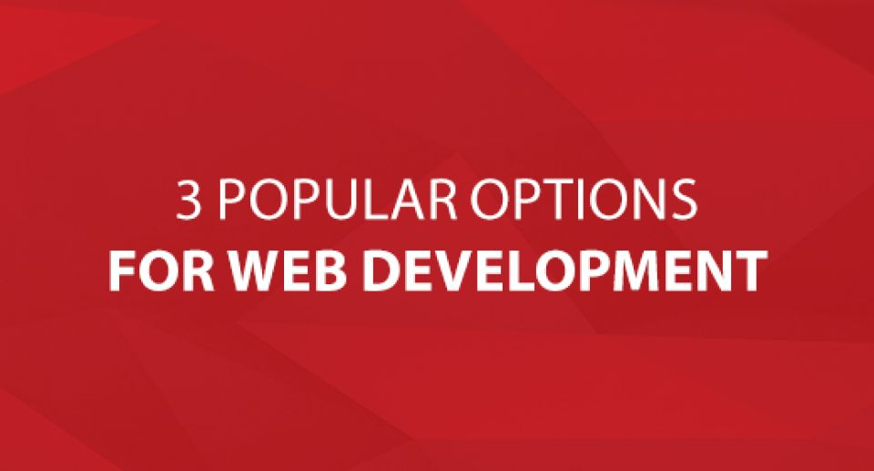3 Popular Options for Web Development