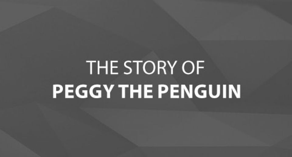 The Story of Peggy the Penguin