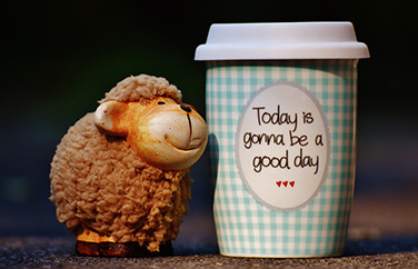 Image of a plastic sheep and a mug