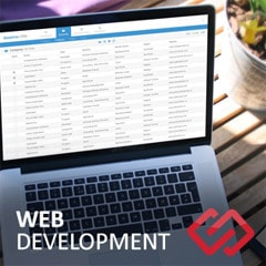 Custom Web Applications